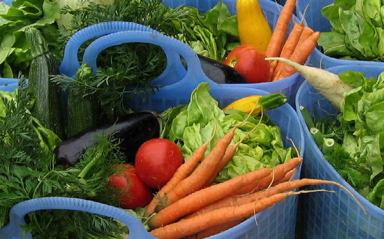 iologische Landwirtschaft: Was