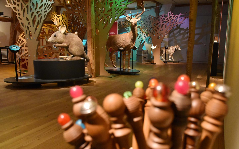 amilien im Museum: Auf Pirsch